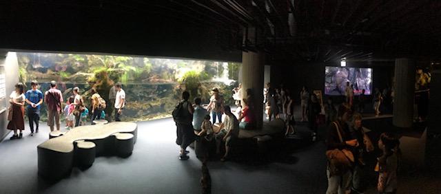1F Atmosphere of Kyoto Aquarium